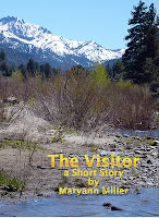 The Visitor-cover